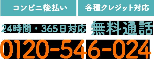 【コンビニ後払い】【各種クレジット対応】24時間・365日対応 無料通話 0120-546-024