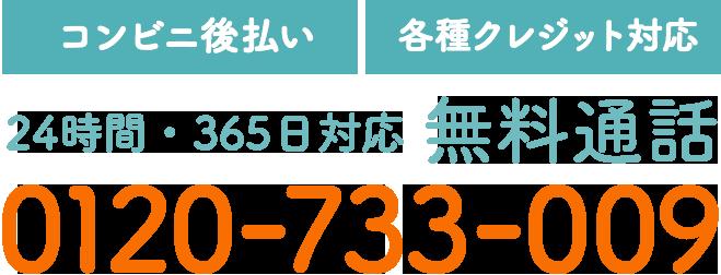 【コンビニ後払い】【各種クレジット対応】24時間・365日対応 無料通話 0120-733-009