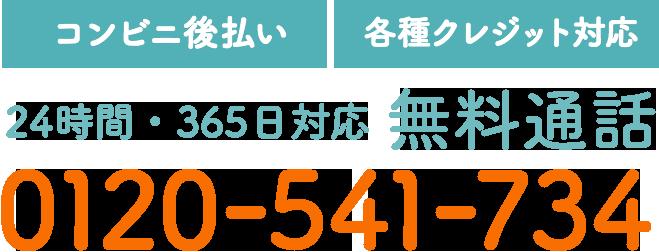 【コンビニ後払い】【各種クレジット対応】24時間・365日対応 無料通話 0120-541-734