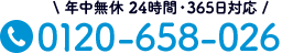 0120-658-026